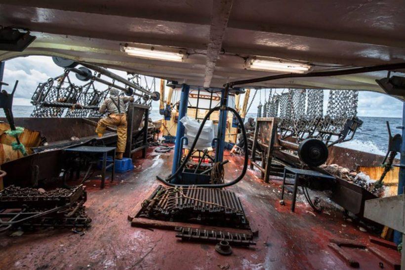 At sea on the Brixham beam-scalloper Emily Rose…