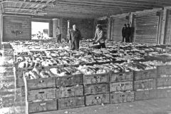 Fishmarkets of yesteryear: Peterhead