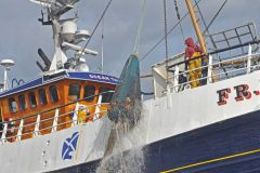 Action from the Moray Firth Squid Fishery