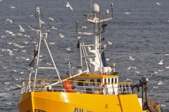 Mixed views on Farne Deeps technical rules