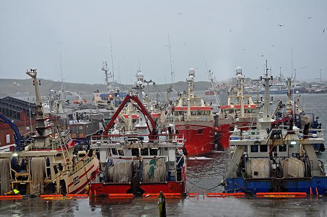 Killybegs pelagic