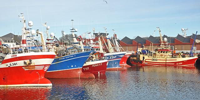 Killybegs polyvalent trawlers
