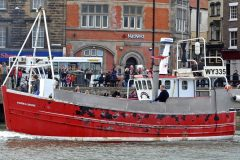 Whitby Crabbers Suffer Heavy Pot Losses