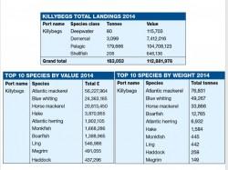 Killybegs landing figures