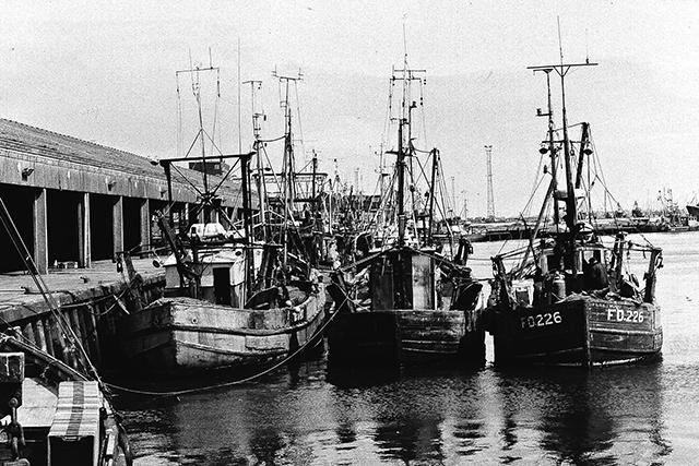 Inshore trawlers at Fleetwood.