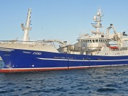 Boat of the week Pacelli