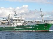 Boat of the week Felucca