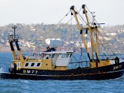 Boat of the week Jacoba