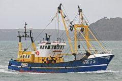 Boat of the Week: Carhelmar BM 23
