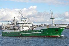Boat of the week: Felucca SO 108