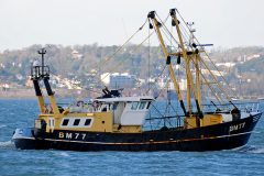 Boat of the Week: Jacoba BM77