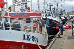 Increased Whitefish Landings At Peterhead