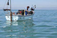 Citizen Science plankton study