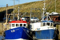 Encouraging outlook for Irish Sea Nephrops fishery