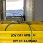 Joy of Ladram