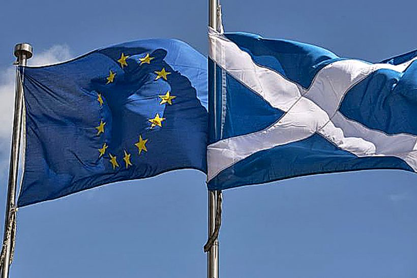 Scottish government aims to grab fisheries control