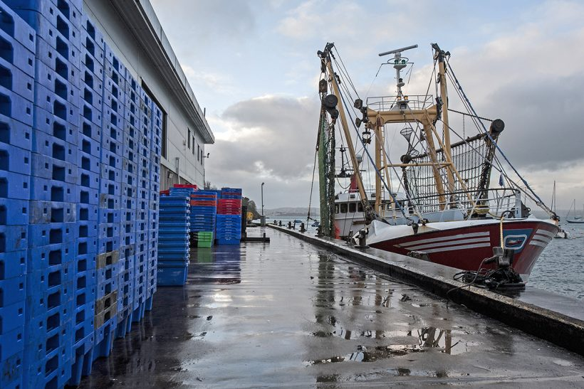 Seafood industry asked to feedback on new Responsible Fishing Ports Scheme