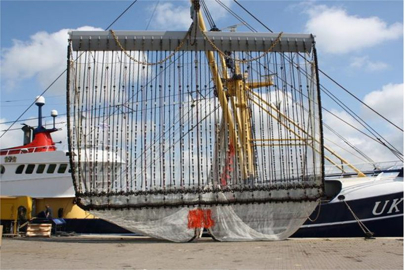 'Ban electric fishing' group tells Brussels