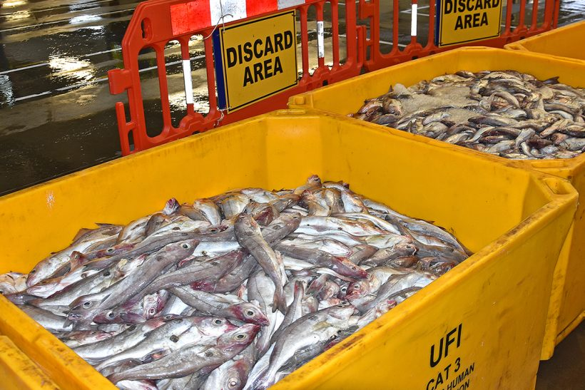 Discards ban probe