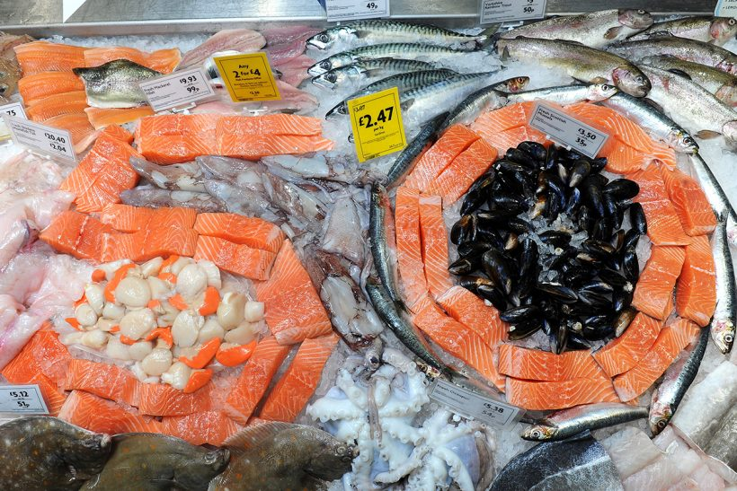 Fewer than 50 days until Seafood Week
