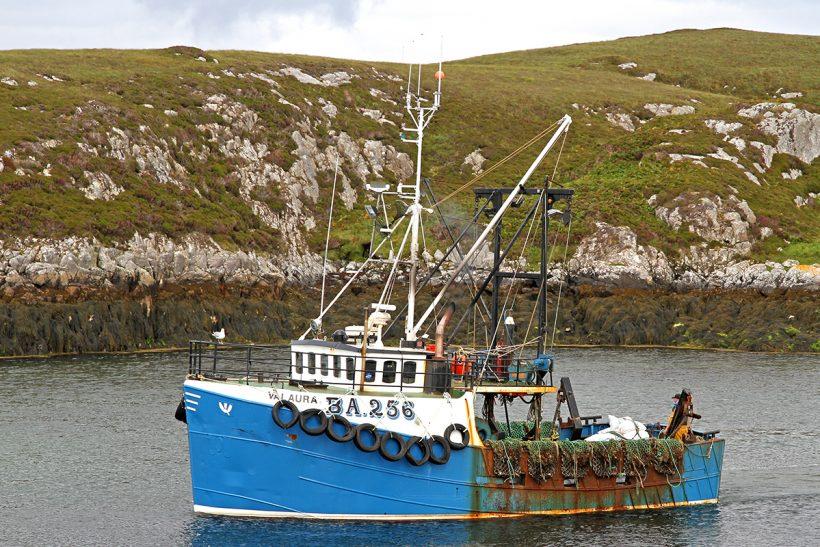 Boat of the Week: Valaura BA 256