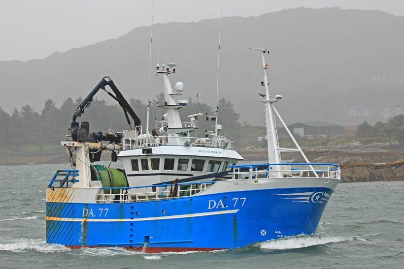 Boat of the Week: Horizon DA 77