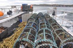 Shellfish fleet warning