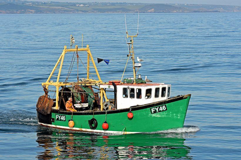 Boat of the Week: Innsfallen FY 46