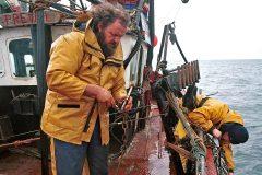 The origins of the present day Cornish sardine fishery