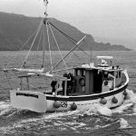 Built by John Moor of Mevagissey in 1986, Lamorna set the Eglinton family on a profitable course in the fishing industry and remained in family ownership for many years.