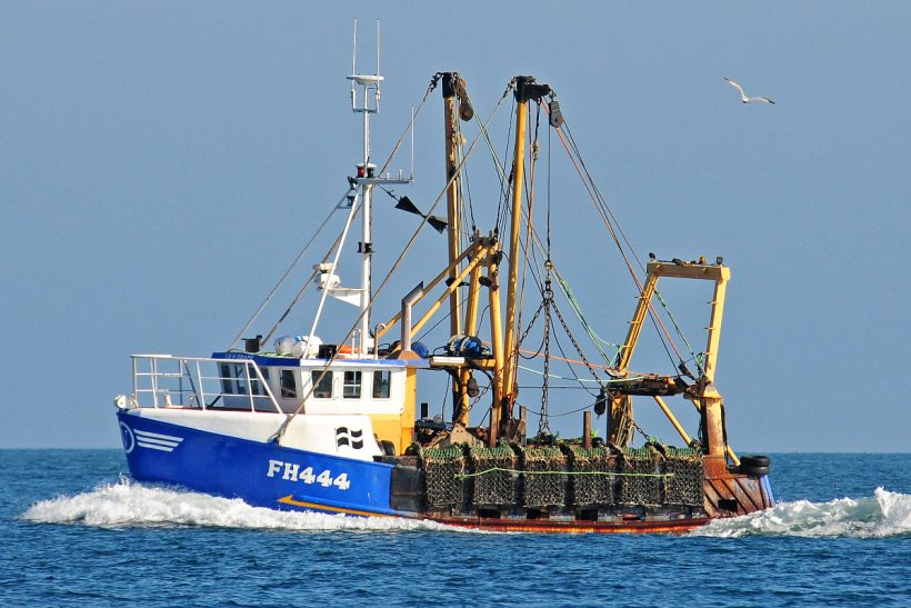 Boat of the Week: Lily Grace FH 444