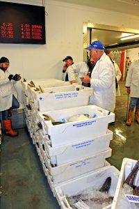 Buyer Mark Owen (in the blue cap) from David Walker and Son fish merchants, bidding for Cornish hake. Auctioneer John Rogers is on the left.