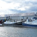 The pair-seiners Boy John, Rosebloom, Lapwing and Budding Rose berthed along the front of the new market