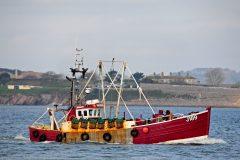 Boat of the Week: Prospector J 189