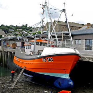 Newlyn ring-netters may have a tough time ahead, until ICES reassesses its precautionary advice on Cornish sardines.