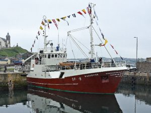 Built 51 years ago, the faithfully-restored ex-Norwegian longliner Haugefisk enters Macduff harbour, after crossing the North Sea 24 hours before going to Portsoy.