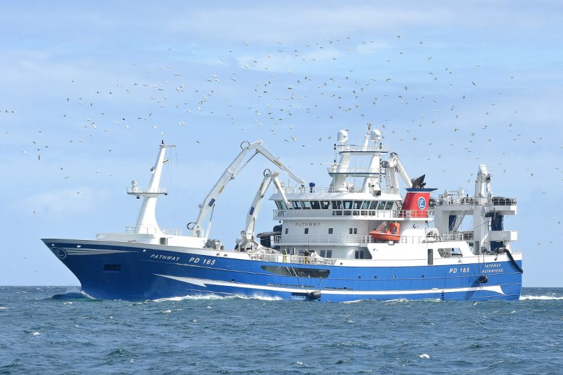 Fishing MSC-accredited North Sea herring on new Pathway