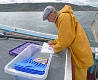 Every fish is recorded and tagged as soon as it is caught to give full accountability and traceability, even though this creates considerable challenges in a small open boat.