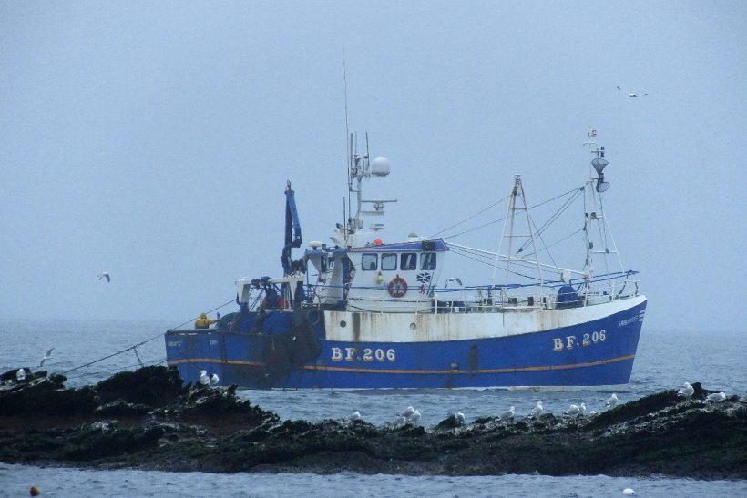 Boat of the Week: Sardonyx II BF 206