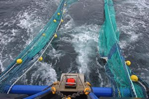 … and the 180ft letterbox twin-rig trawls…