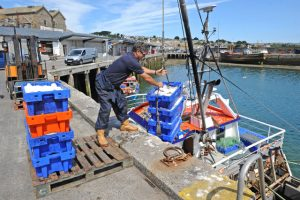 Spirited Lady III returning recently to Newlyn, with 67 boxes of fish (50 boxes prime) after a three-day trip.
