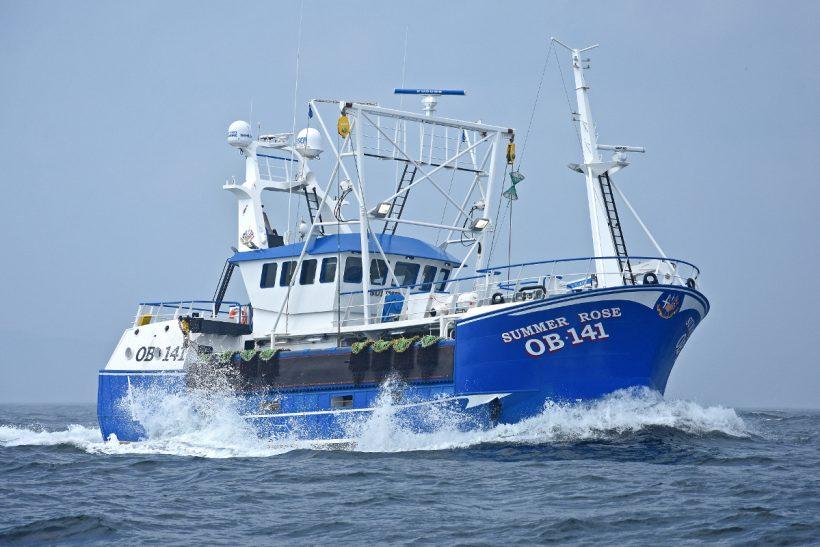 Boat of the Week: Summer Rose OB 141