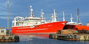 Midwater trawlers berthed in Balaclava basin.