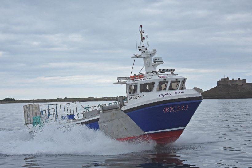 Boat of the Week: Sophy Rose BK 533