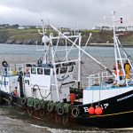 The Kirkcudbright scalloper Academus heads in to land at Peel…