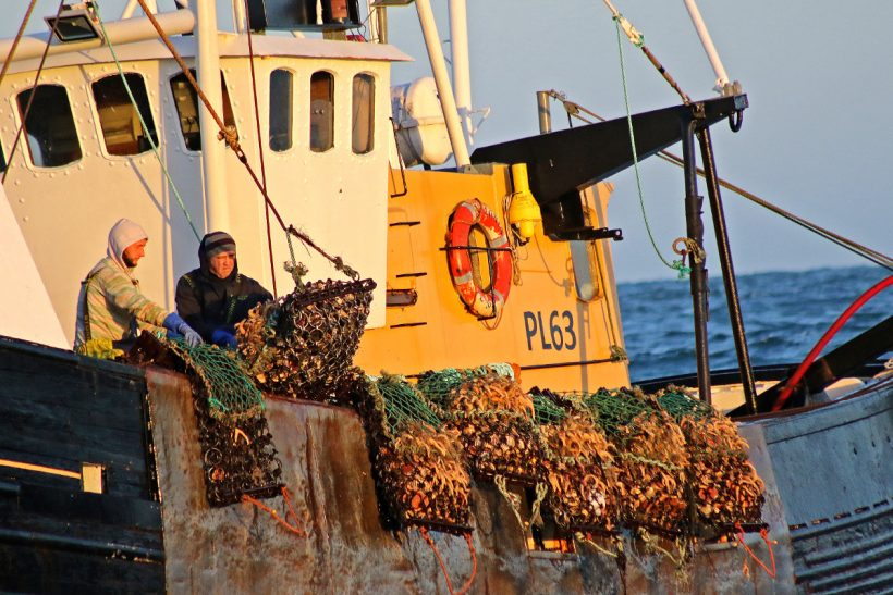 First-day action from the Isle  of Man king scallop fishery – in pictures