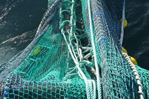 The 200ft lowflyer nets, made by Faithlie Trawl, are fitted with flip-up ropes.