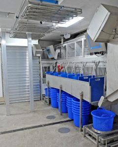 Clear-fronted holding bins are positioned between two sets of fish-weighing and labelling equipment, as part of the highly automated VCU catch-handling and management system installed on Audacious.
