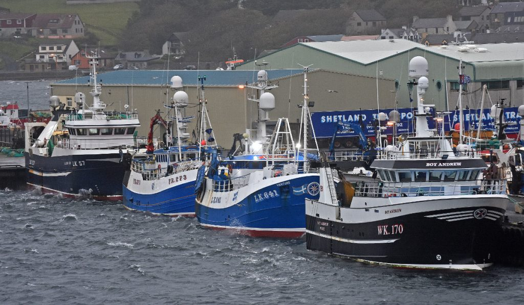 Local and visiting whitefish boats (Alison Kay, Ocean Reaper IV, Venture and Boy Andrew) sheltering at Scalloway.