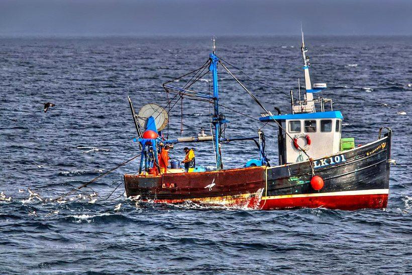 Shetland in focus